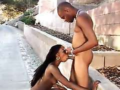 Ebony cutie Domineko got so excited when her lover invited her to fuck in the outdoors. They..