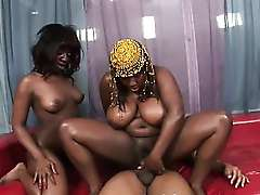 Black Girls With Massive Titties And Asses In Threesome