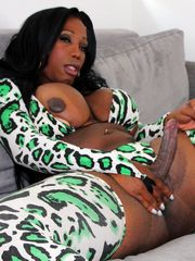 Extremely hot black shemale BBW with..